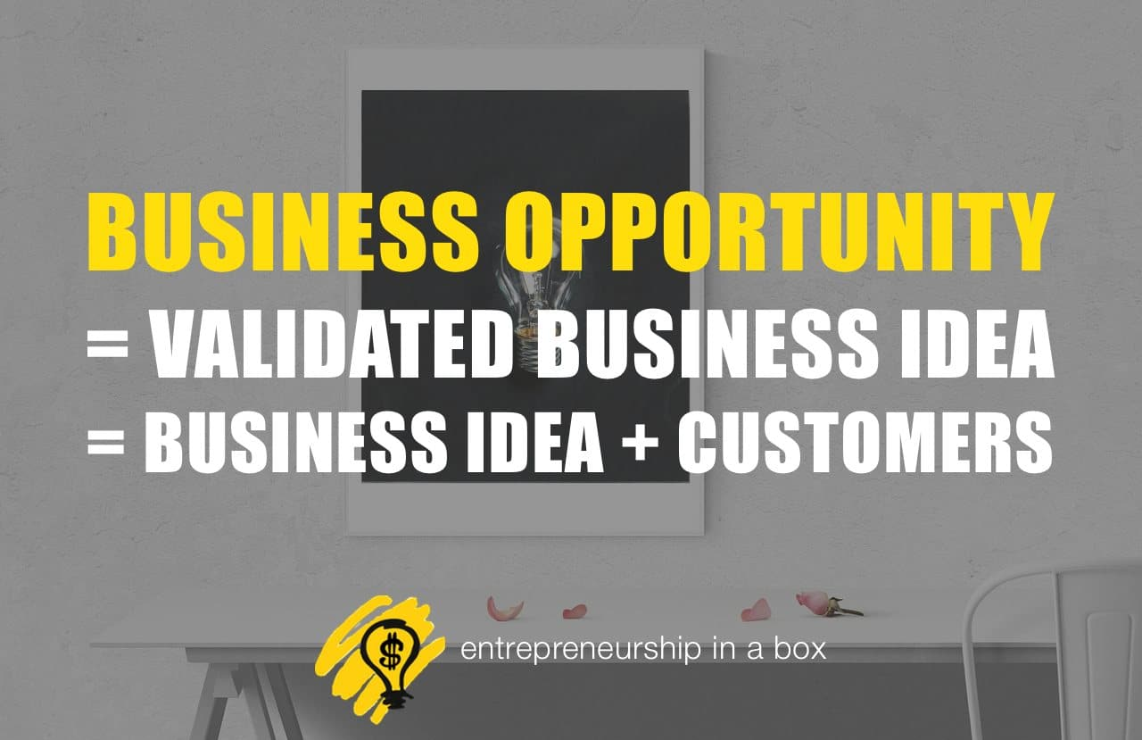 difference between business ideas and business opportunities